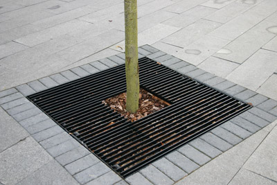 Steel Tree Grilles